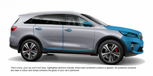 Cleargard Paint Protected Car
