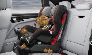 Car Seat Before Successful Germinator Treatment